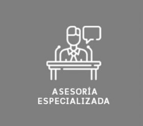 asesoria